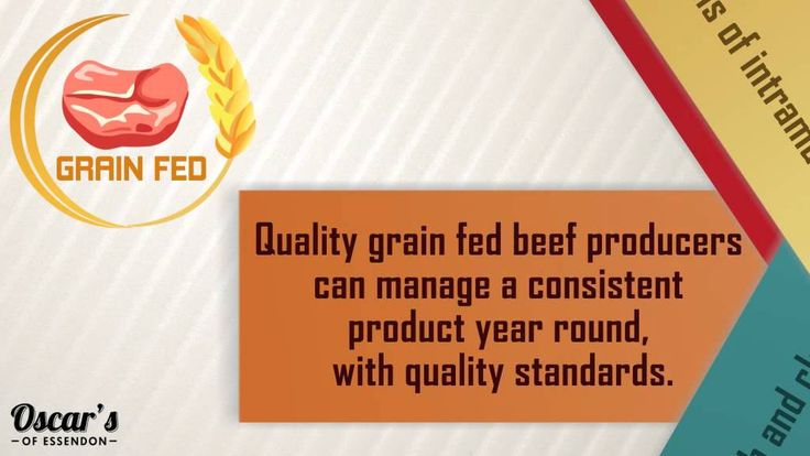 Know more about the Angus beef