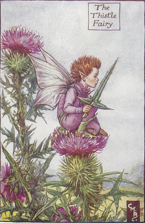 The Thistle Fairy by Cicely Mary Barker