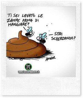http://www.casaorganizzata.com/2012/06/ricetta-fai-da-te-repellente-per-mosche-naturale/