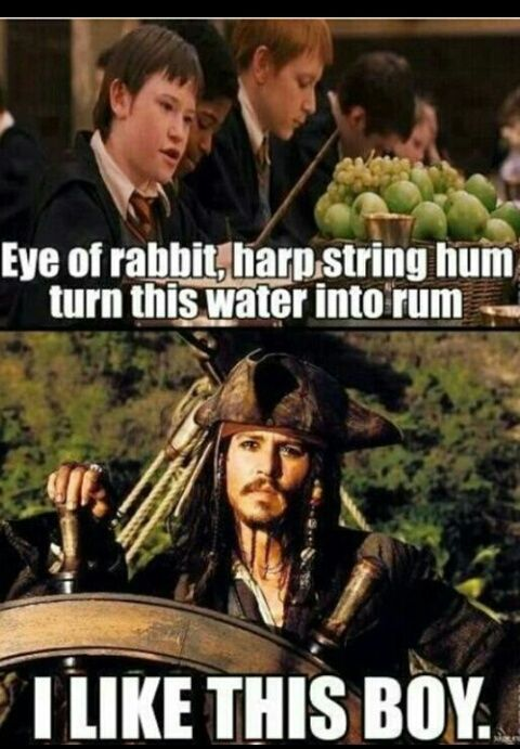 funny, harry potter, jack sparrow, pirates of the caribbean, rum, seamus finnigan