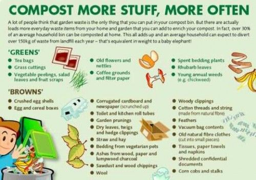 Who wants to get me a bin? Composting
