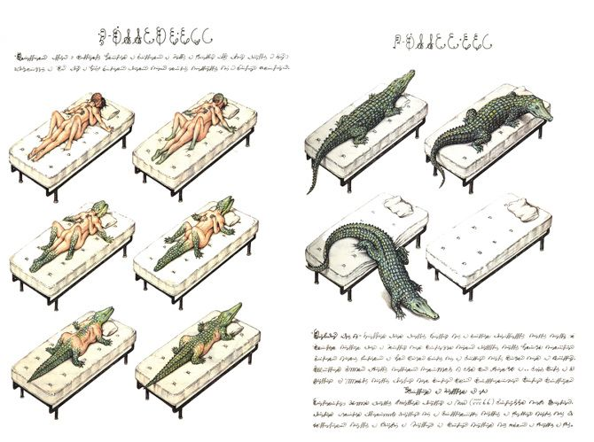 libros misteriosos / seraphinus