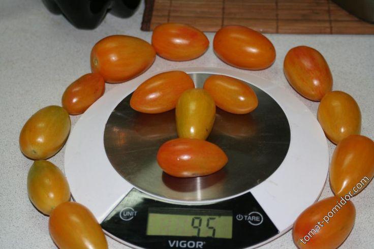 Форум - выращивание томатов, огород, дача - Bluch