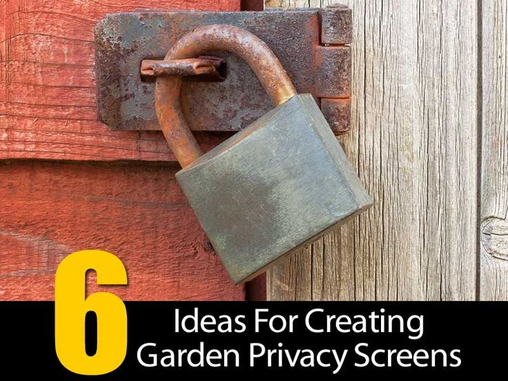 Establishing a garden in your yard is definitely a labor of love. You've groomed and watered your garden with diligence every week. When the flowers finally come into bloom, you finally have a chance to enjoy all your hard work. There are times you would like to add an element of privacy to your garden. …