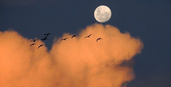 The moon has fallen