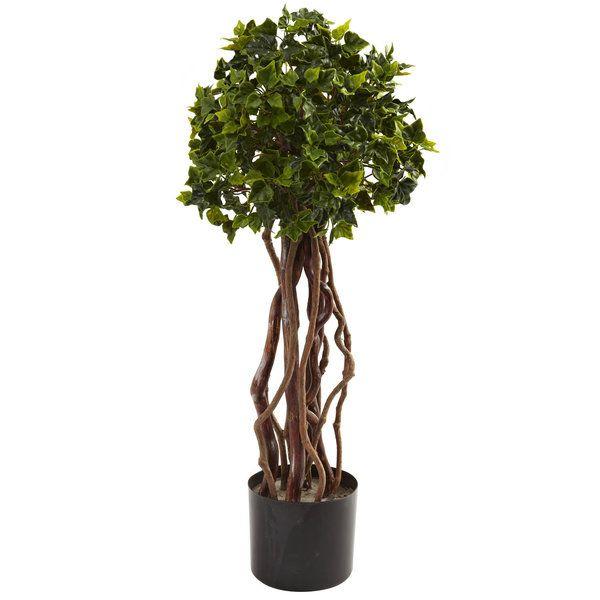 393 best Large Indoor plants images on Pinterest | Silk plants ...