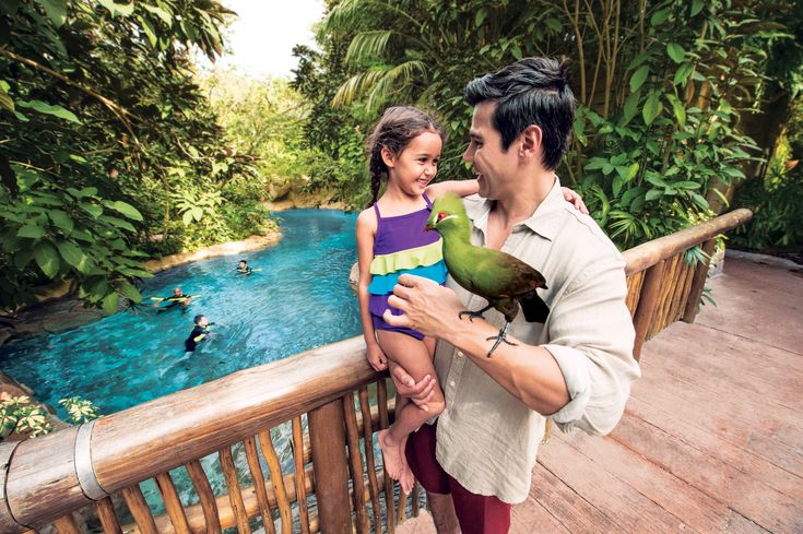 Let colourful birds land on your shoulders and eat out of your hands in the Explorer's Aviary.