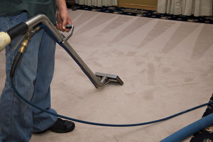 Carpet cleansing professionals can obtain the foul-smelling odors from your house. Simply sprinkle a little bit of cooking soda on your carpet when it is not subjected to hefty foot website traffic. Allow it rest for a few hours then vacuum it up. Vicious smells need to go away or be greatly reduced.