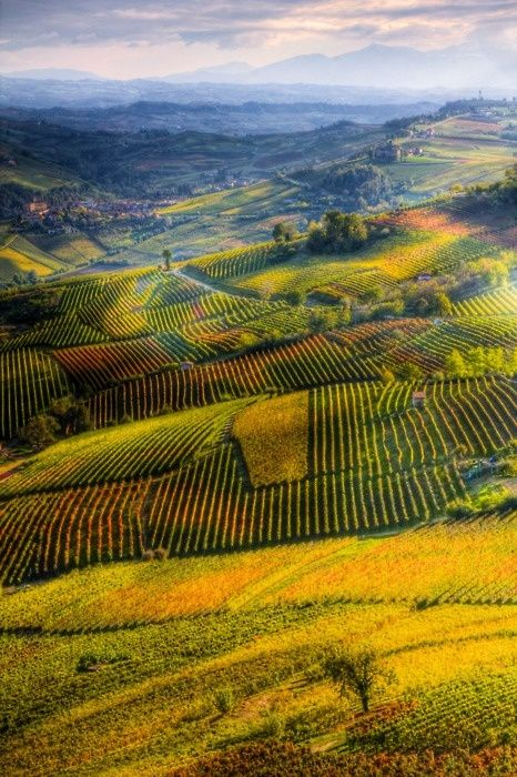 Langhe, Italy