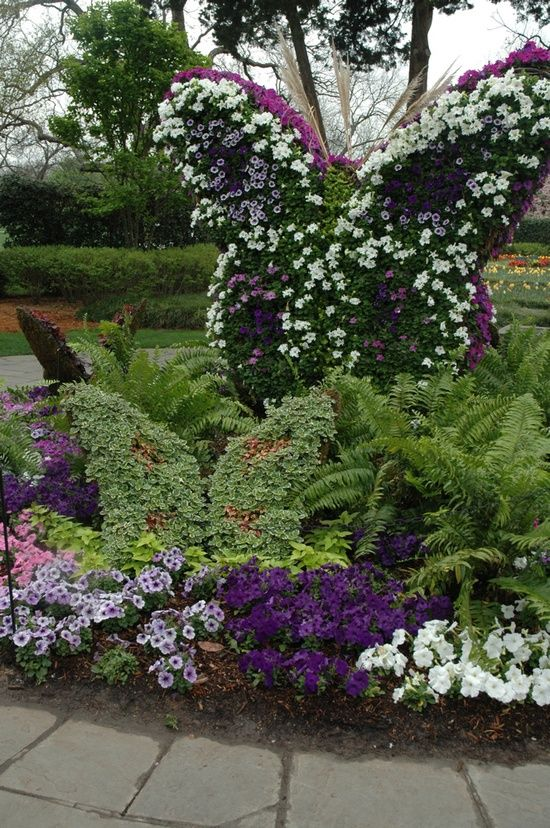 Butterfly Topiary At The Dallas Arboretum
