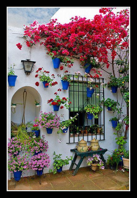 0202 rincon tipico (patios cordoba) by Pepe Gil Paradas. (De vuelta a casa), via Flickr