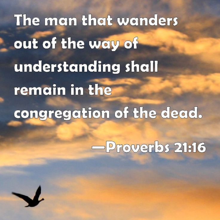 202 Best Images About Book Of Proverbs 21