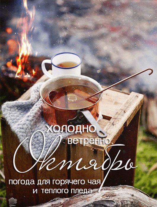 Днем рождения, открытки с пожеланием тепла в холодную погоду