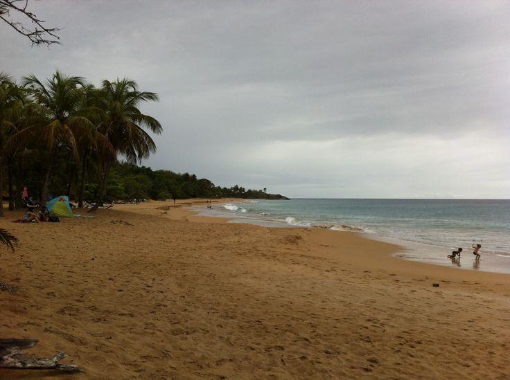#Plage de la #Perle. #Guadeloupe #Antilles #France