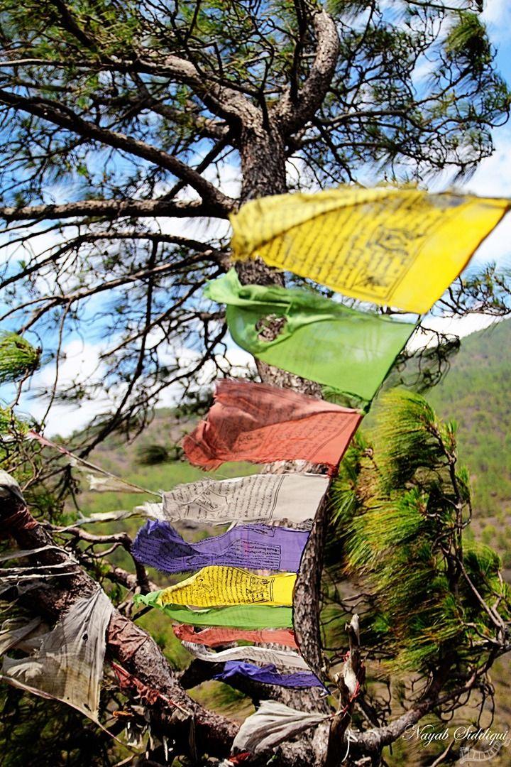 Bhutan - Travel | Travel photography, India, Pune