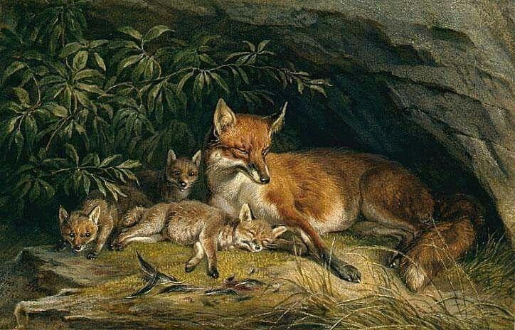 рисунок лисы с лисятами в норе поп-группа ласковый