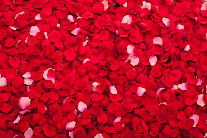 Beneficios de los pétalos de rosa