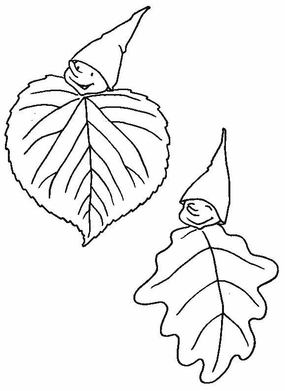 dos hojas muy simpáticas
