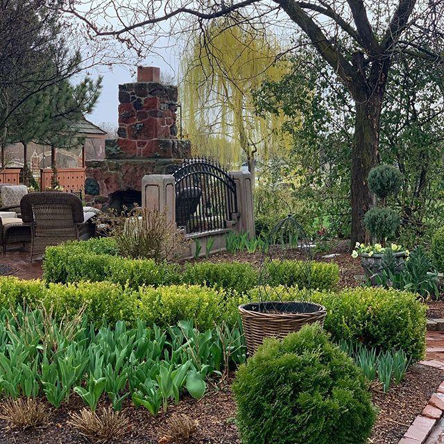 Pin on Laura LeBoutillier....Garden Answer