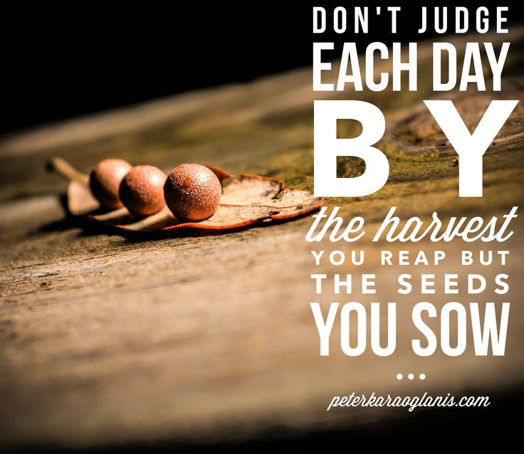 Don't unfairly judge success by harvest rather the sowing