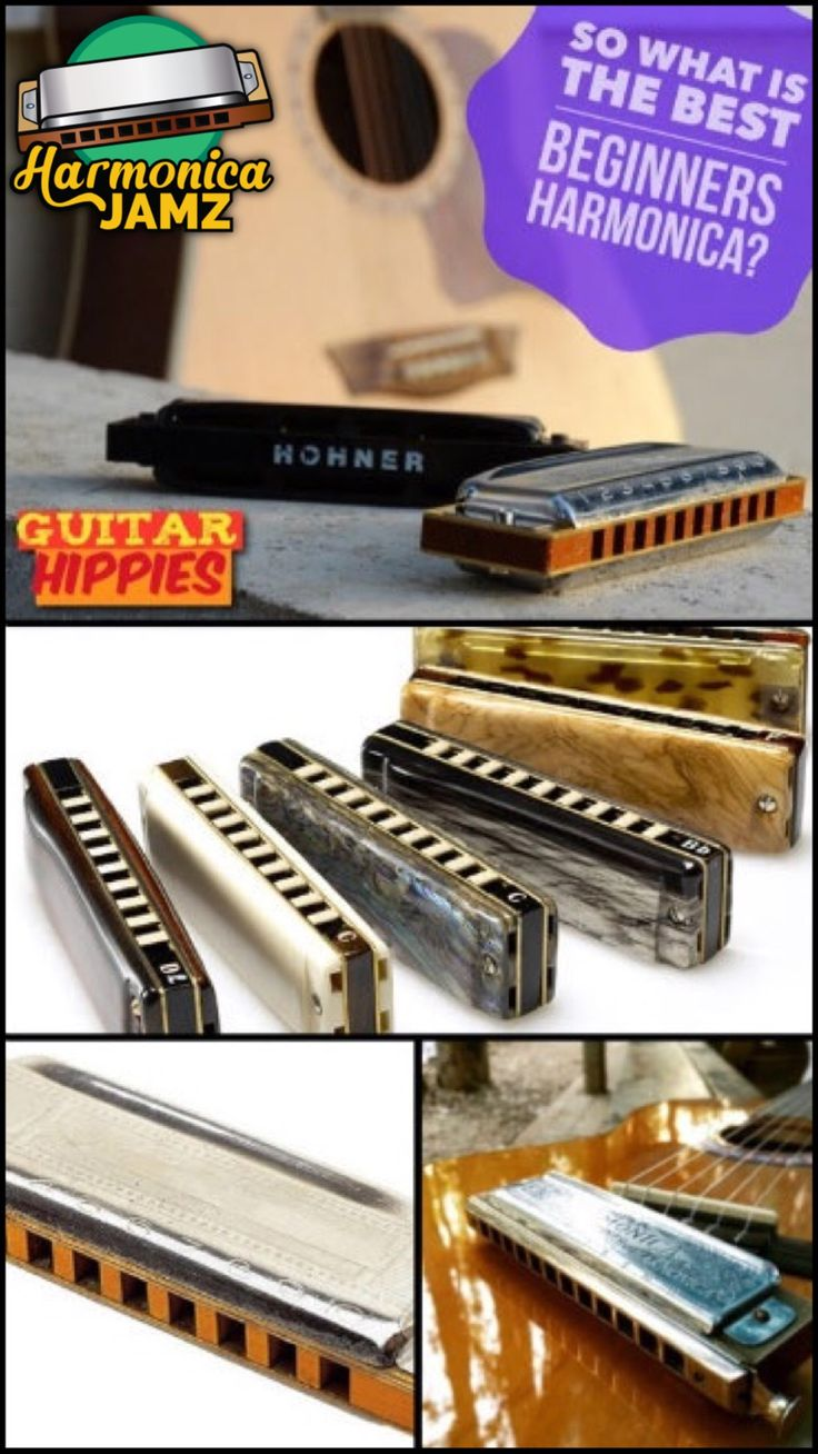 199 best harmonicas images on pinterest tools guitar and house best beginner harmonica which harmonica is the best for beginners hexwebz Image collections