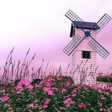 Pink windmill!!! Bebe'!!! Love this windmill!!!