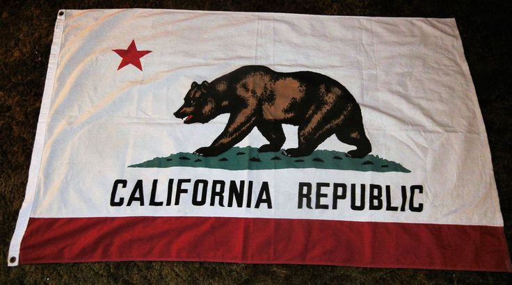 Vtg California Republic State Flag Pennant Lg 100% Cotton Defiant Made in USA