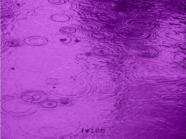 🔷 Purple Tears 🎶  #Prince #PurpleRain #PurpleTears #RIPPrince #PrinceRIP #friday #princetribute #anchorcafe #anchorrestaurant #anchorestaurant #milsonspoint #kirribilli #lavenderbay #northsydney #autumn #autumnal #autumn2016 #autumnsydney #autumnprince