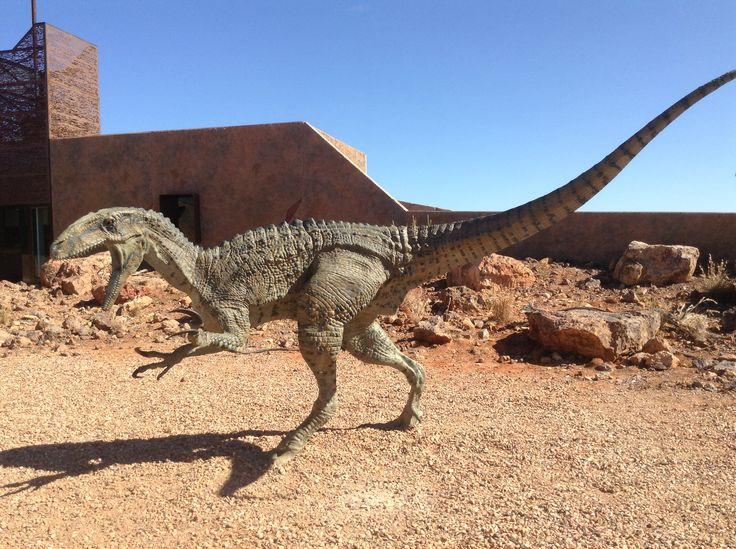 """Banjo"" australian dinosaur museum, Winton, Qld."