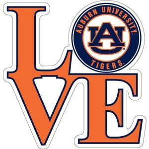 The Auburn Family is one of the most solid, inspiring things I've ever been a part of.: Auburn Stuff, Auburn War Eagles, Damn Eagles, Eagles Baby, War Damn, Auburn Fans, Auburn Football, Auburn Tigers, Things Auburn