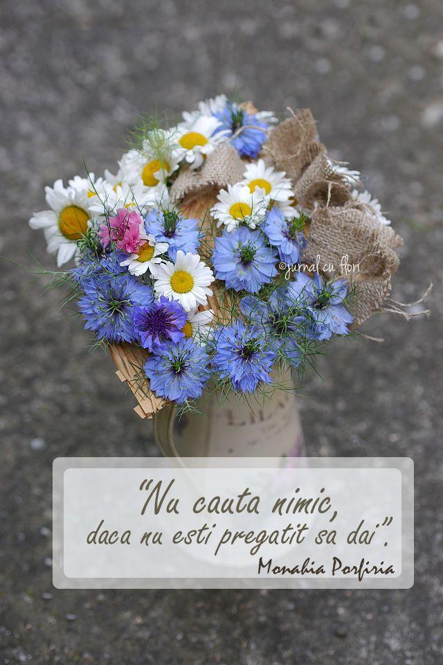 #citatdragoste #citatiubire #monahiaPorfiria