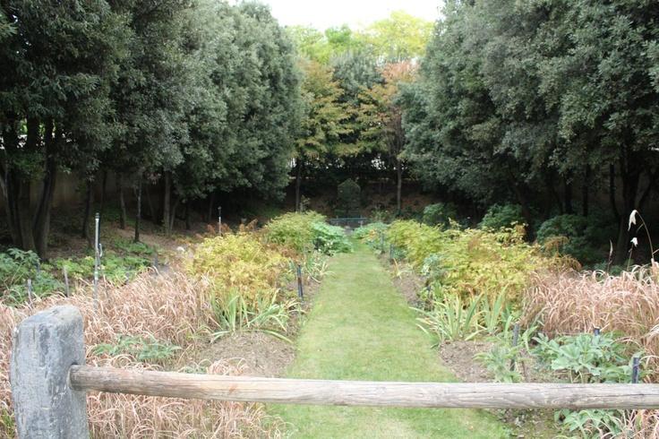 17 best images about gilles cl ment jardinier paysagiste for Jardinier paysagiste versailles