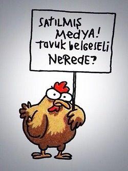 #tavuk #occupygezi