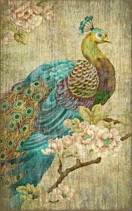 Peacock Wall Decor