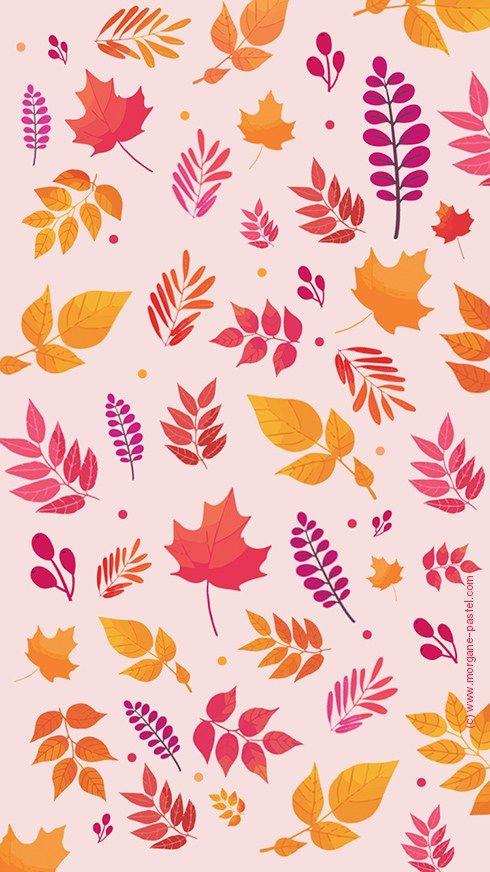 Fond d'écran iphone automne octobre feuille free wallpaper download #IphoneBackgrounds