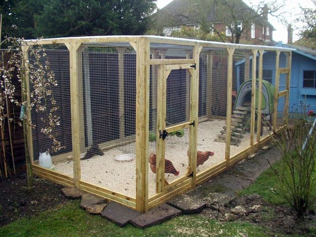 14 best chicken everything images on pinterest chicken for Chicken enclosure ideas