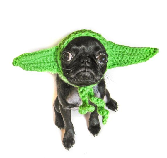 YODA DOG COSTUME / star wars inspired jedi cat by meowadays