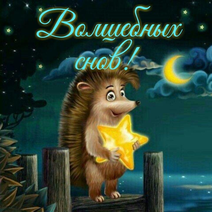 Доброй ночи хороших сновидений картинки прикольные