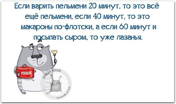 Веселые картинки с фразочками (23 штуки) » RadioNetPlus.ru развлекательный портал