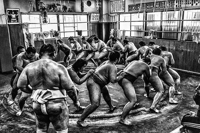 Inside the sumo world #sumo #inside #tokyo #japan #tradition #sport #blackandwhitephotography #photographylovers #blackandwhite #sportphotography #atmosphere #memories #stronger #training #sohard #dancing #again #tobestrong #dayafterday #nevergiveup