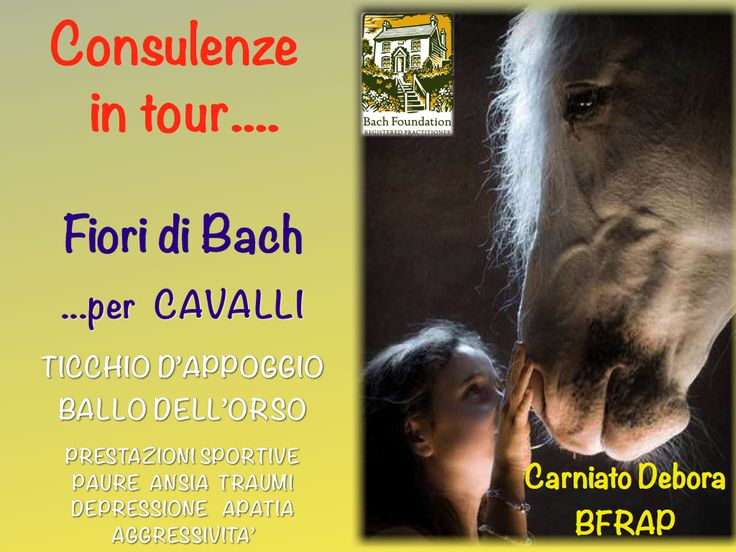 CONSULENZE IN TOUR…..PER CAVALLI