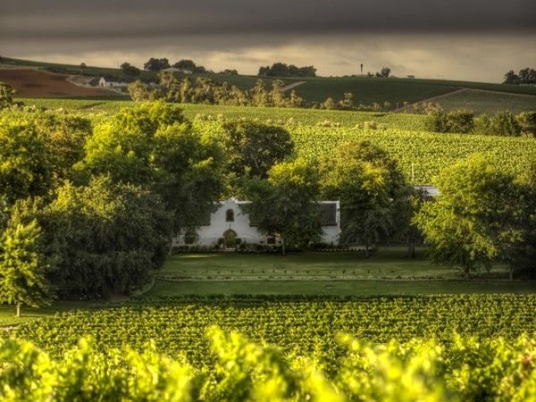 The best restaurants in the Cape Winelands: Where to eat in 2015 - #bestrestaurants #capewinelands