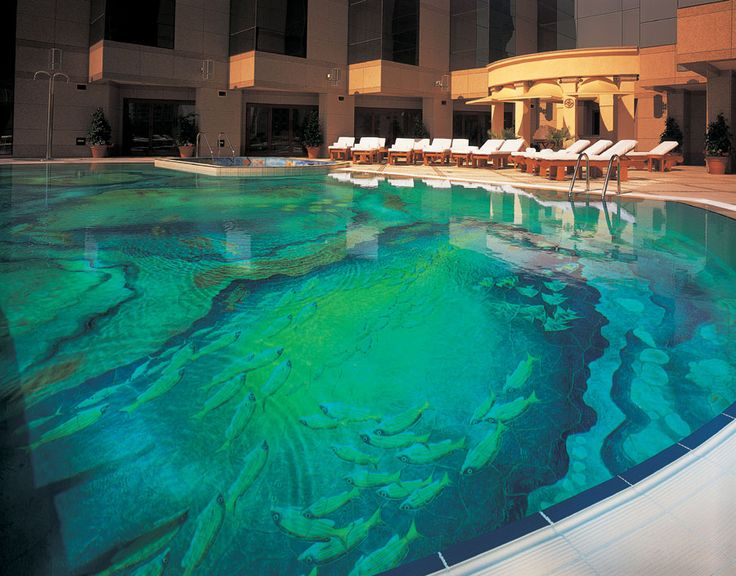 1000 images about amazing swimming pools on pinterest for Pool design dubai