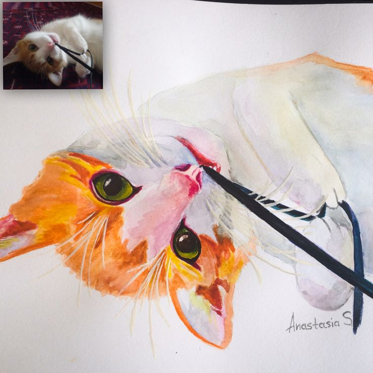 Watercolor portrait of a sweet cat