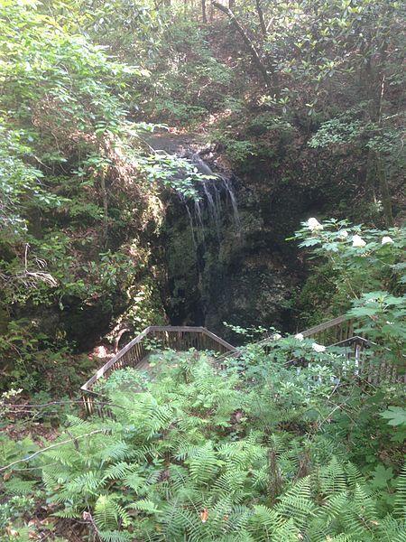 7 Florida Waterfalls - Falling Waters State Park, Chipley, FL