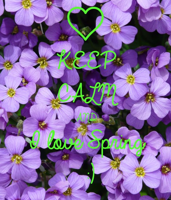 'KEEP CALM AND I love Spring  :)' Poster http://www.keepcalm-o-matic.co.uk/p/keep-calm-and-i-love-spring/