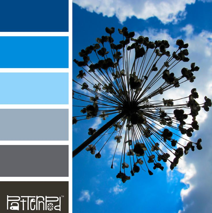 Color Palette: Blue, Gray, Charcoal.  If you like our color inspiration sign up for our monthly trend letter - click the image for the link.