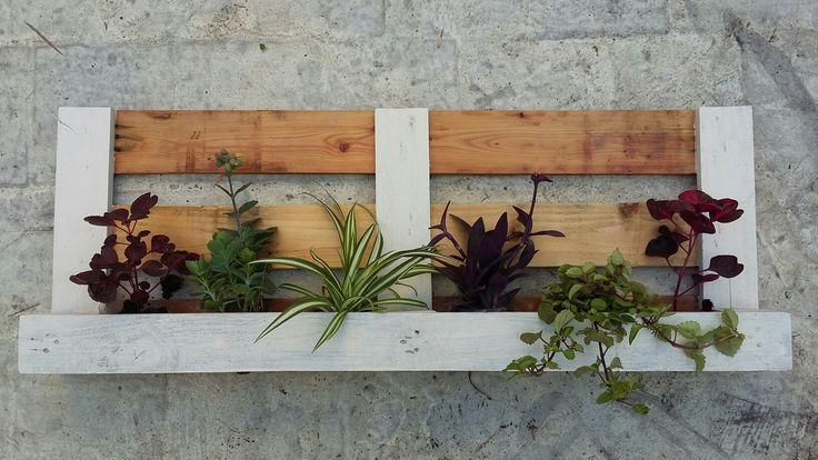 Jardín Vertical artesanal hecho con pallet. ¿Querés el tuyo? Consultame por diferentes modelos y precios! glastra@gmail.com
