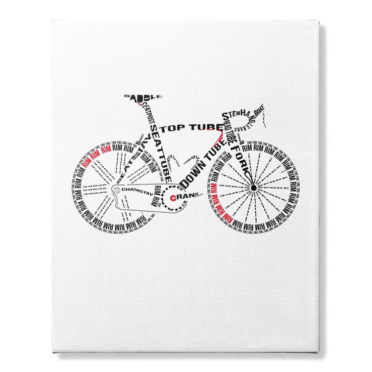 CANVAS CYCLING ANATOMY