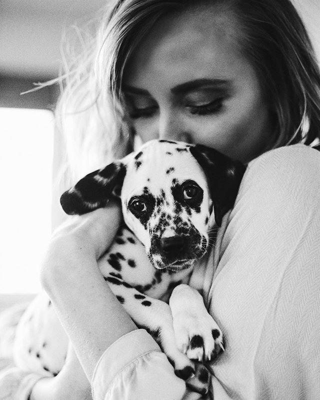 Penny the Dalmatian pup. @makenna_alyse